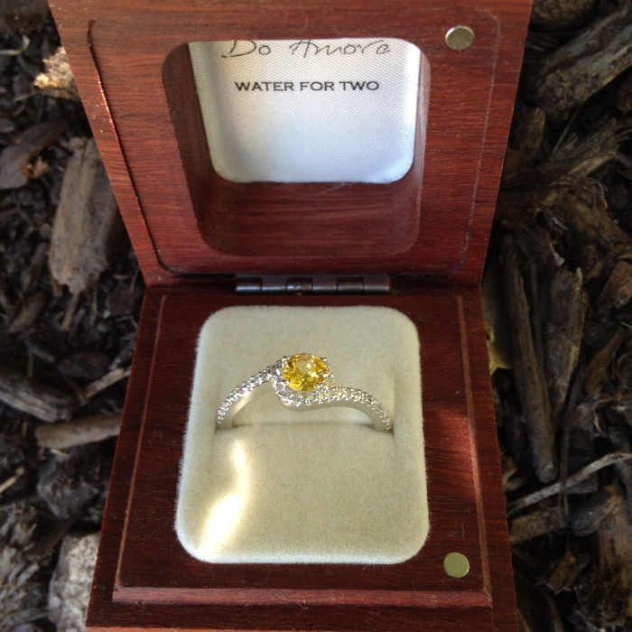 Yellow Sapphire Engagement Rings from Do Amore
